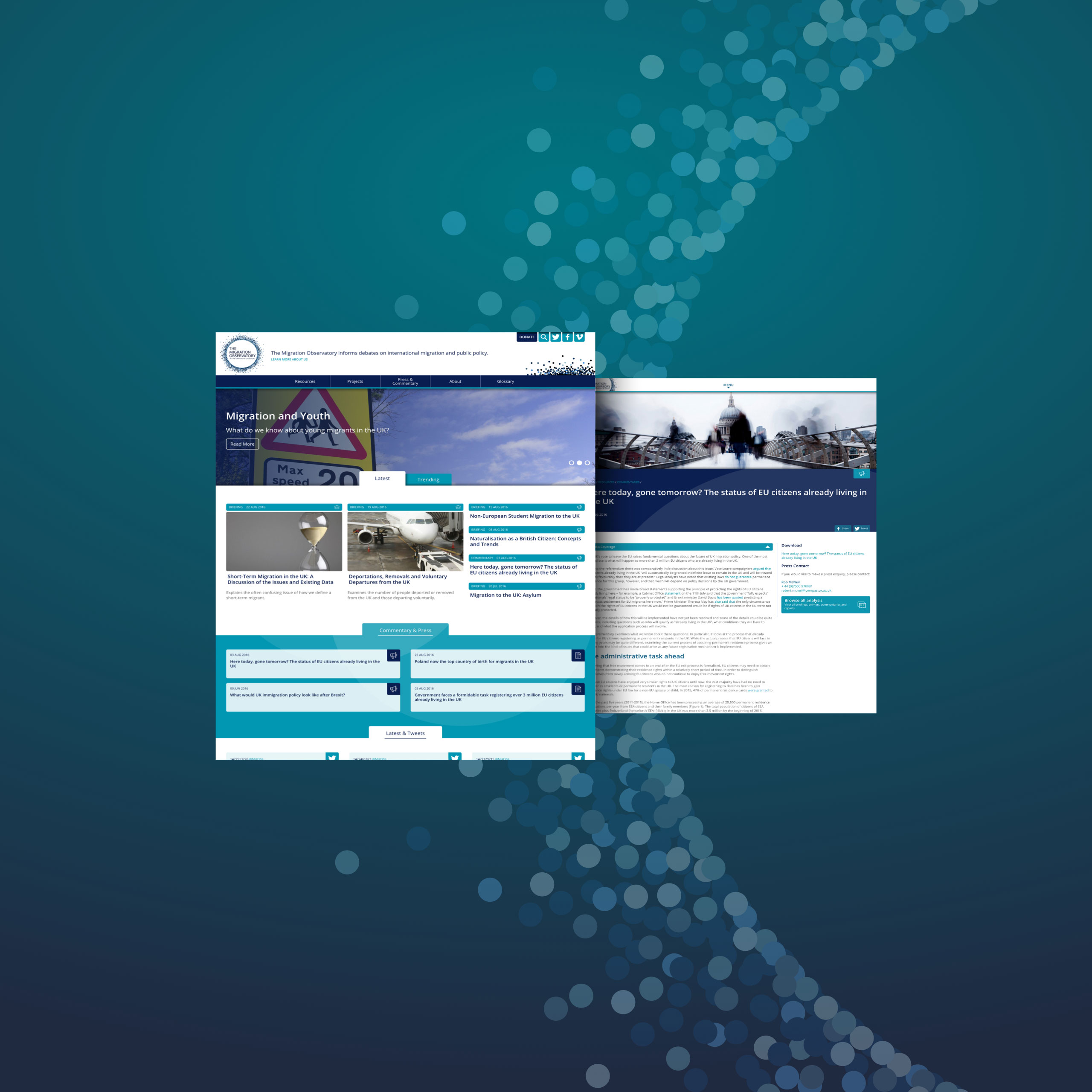 Migration observatory website design